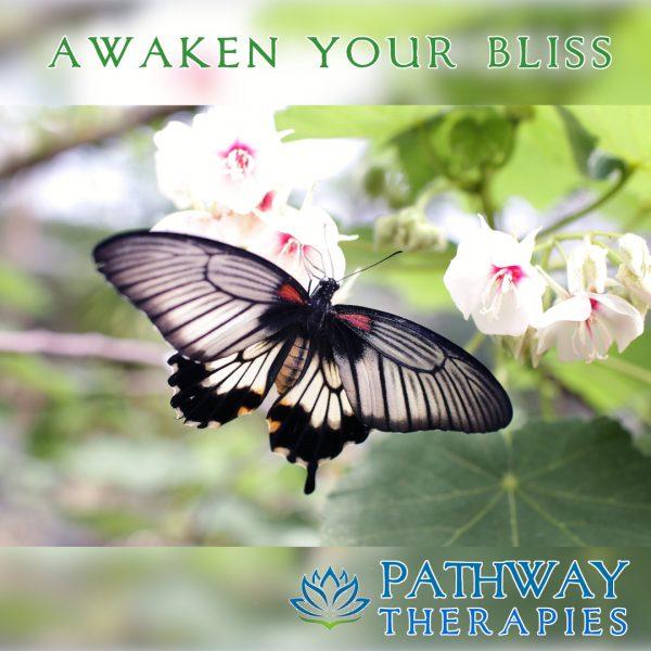 Awaken Your Bliss – Cover